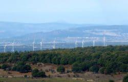 Bonorva Wind